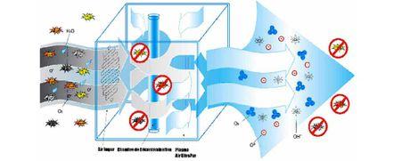 filtration biozone 1